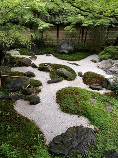 The garden of my favourite saxophonist, Snake Davis. This is just like I have in mind for my area