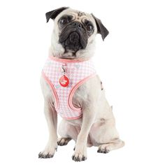 Puppia Aggie Dog Harness A Indian Pink Pet Dogs, Pets, Dog Anxiety, Puppy Face, Dog Park, Dog Behavior, Dog Harness, Training Your Dog, Dog Owners