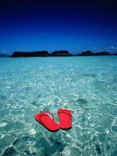 Going Coastal Red Flip Flopsflip