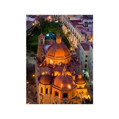 Church of San Diego and Jardin de la Union at Night, Guanajuato,... ($24) ❤ liked on Polyvore featuring home, home decor, wall art, photographic wall art, floral wall art, floral home decor and photography wall art