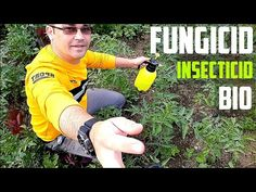 Useful Life Hacks, Youtube, Tips, Organic, Agriculture, Plant, Lawn And Garden, Youtubers, Youtube Movies