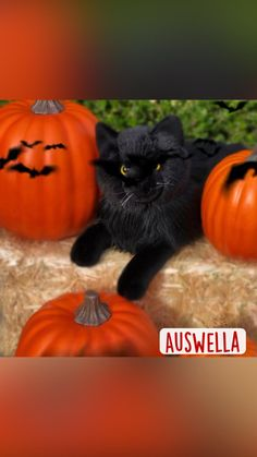 Pumpkin Carving, Vegetables, Plush, Food, Essen, Pumpkin Carvings, Vegetable Recipes, Meals, Yemek
