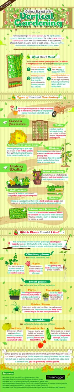 Get Started With Vertical Gardening (Infographic) : Calgary.isgreen.ca