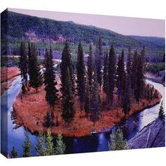 Dean Uhlinger Dusk Meander Yellowstone Gallery-Wrapped Canvas, Size: 16 x 24, Purple