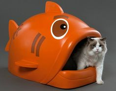 Litter fish - Best litter box ever. i want one of course I need a cat first