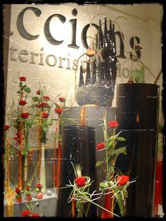 Accions. Sant Jordi 2005
