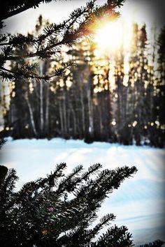 christmas | Tumblr