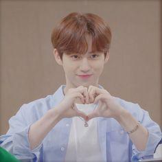 Project 4, Seong, Theme Song, Kpop Boy, My Boys, Boy Groups, People, Daisy, Daisies