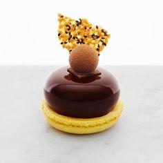 Passionfruit & Chocolate Petit Gâteau [ passionfruit crème, sesame seed tuile, macaron, tropical truffle] | Bibelot