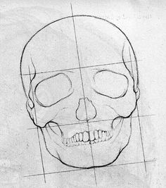 How to Draw a Skeleton Step by Step Face