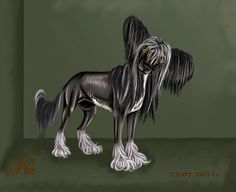 Chinese crested dog by nastyxa882