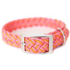 Kiss My Mutt Braided Dog Collar | Collars | PetSmart
