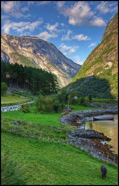 Norway  #travel #travelphotography #travelinspiration #Norway