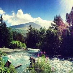 Alaska never disappoints! This photo of Ptarmigan Creek in Moose Pass on the Kenai peninsula was taken by Blake, Meagan's cousin. We love how the sun highlights the gorgeous people fireweed! - www.AFriendAfar.com