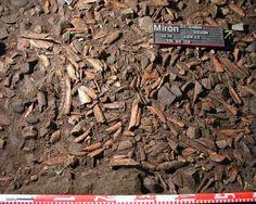 Un estudio de huesos de ciervo en cueva del Mirón, clave para reconstruir el cambio climático de la Prehistoria http://laoropendolasostenible.blogspot.com/2014/12/un-estudio-de-huesos-de-ciervo-en-cueva.html#.VHxYwoWYOFw.twitter