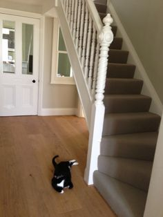 Farrow and Ball Shaded white walls with Wimborne white woodwork. With matting up the stairs Hallway Colours, Wall Colors, House Colors, Paint Colours, Hall Carpet, Carpet Stairs, Wimborne White, Hallway Paint, Hallway Carpet Runners