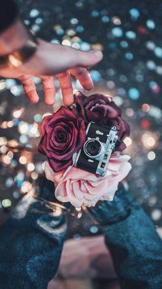 Popular Quotes most popular wedding quotes Wallpapers Tumblr, Tumblr Wallpaper, Pretty Wallpapers, Iphone Wallpaper, Flowers Wallpaper, Diy Artwork, Divorce, Popular Quotes, Flower Quotes