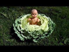 YouTube Crepe Paper Flowers Tutorial, Paper Flower Backdrop, Paper Flowers Diy, Paper Roses, Handmade Flowers, Baby Shooting, Baby Samples, Flower Video, Leaf Template