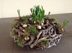 I like this rustic spring decoration, would work well as an Easter center piece ., I like this rustic spring decoration, would work well as an Easter center piece with painted eggs. Easter Wreaths, Christmas Wreaths, Christmas Decorations, Easter Flowers, Spring Flowers, Spring Decoration, Diy Decoration, Deco Nature, Deco Floral