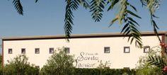 Sabia que o Grupo Vila Galé é mais do que hotéis?
