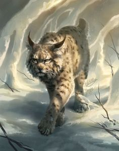 Bobcat Collab with TehChan + Video by TamberElla on DeviantArt Big Cats Art, Cat Art, Warrior Cats, Fantasy Paintings, Animal Paintings, Animal Sketches, Animal Drawings, Canvas Painting Designs, Mythical Creatures Art