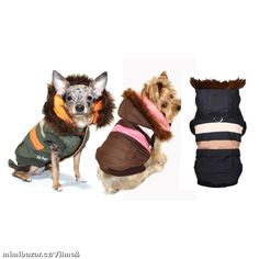 Sametová roláda jako sen | Mimibazar.cz Dog Sweaters, Sweater Coats, Shiloh, Terrier Mix, Four Legged, Doge, Yorkshire, Puppy Love, Scooby Doo