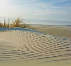 Island of Terschelling | Waddenzee | Netherlands | Guided Tours | www.sightseeingholland.com