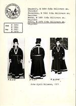 Gällivare gamla kvinnokolt inköpt av Otto Lindgren 1913.