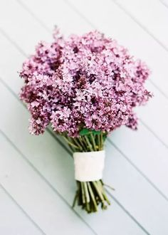 Simple and lovely Lilac Pretty Flowers, Fresh Flowers, Purple Flowers, Wedding Bouquets, Wedding Flowers, Lilac Bouquet, Bouquet Flowers, Paper Flowers, Hibiscus