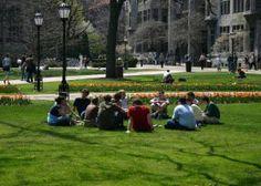 The Experts' Choice: The Best Undergraduate Colleges #undergrad #college #hiddengems