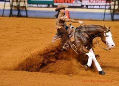 "all-the-horses: ""Colonels Shining Gun Colonels Smoking Gun x Shining Little Peach Quarter Horse, Stallion Born 2007 "" Reining Horses, Thoroughbred Horse, American Quarter Horse, Quarter Horses, Western Riding, Western Tack, Western Saddles, Barrel Racing Horses, Barrel Horse"