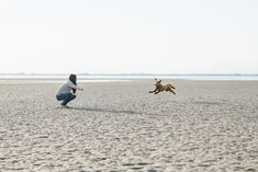 :) We were thrilled when Vivian and Michael told us that they would like to have engagement photo session on the… Beach Engagement, Engagement Photos, Vancouver Beach, Little Dogs, New Friends, Photo Sessions, Coast, Photography, Little Puppies