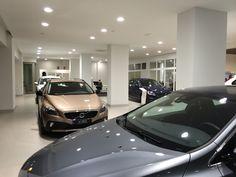 Exposición Auto Sweden