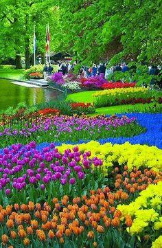 Sonia Kim Google+ Keukenhof Gardens, Amsterdam, Netherlands