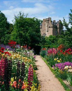Crathes Castle Photograph by Brian Lawrence/Getty Images  Construction on Crathes Castle, near Aberdeen, began in 1553 and lasted 43 years. The estate's famed walled garden is divided into eight themed areas separated by Irish yew hedges, some of which are more than 300 years old.