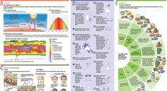 Infográfico sobre los cuidados de la piel y el sol