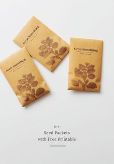diy seed packets with free printable