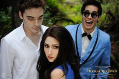 The Hillywood Show - Breaking Dawn Part 2