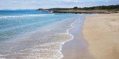 Çeşme Altınkum Plajı ve Yakındaki Oteller - YakinOtelBul.com