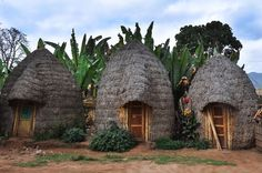Dordze people huts, Omo valley, South Ethiopia