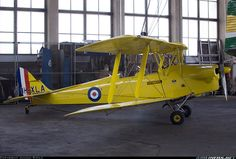 Nikon D300, Tiger Moth, Aircraft Pictures, Tigers, Ww2, Planes, Gypsy, Aviation, Dragon