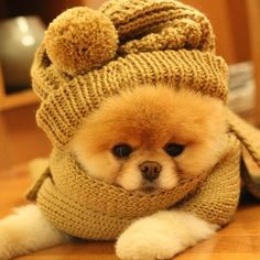 All rugged up !!