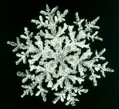 Snowflakes are the proof of nature beauty I Love Snow, I Love Winter, Winter Night, Fractals In Nature, Snowflake Images, Snowflake Wallpaper, Ice Crystals, Compass Rose, Winter Scenes