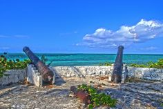 The wall- Fresh Creek - Andros Island - Bahamas. This is my favorite spot on the planet.