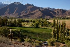 Irrigated farms around Cachi. Cachi, Argentina by Michael S. Lewis