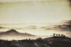le mie colline di seta (my hills silk) by massimo mantovani on 500px