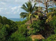 Chole Mjini Eco-lodge.... Island living in locally crafted tree houses. Looks like Paradise.