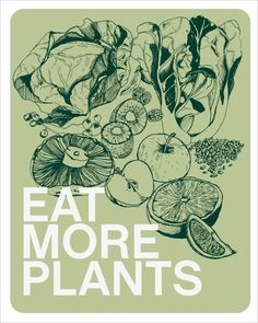 eat more plants great tips for going vegan with links to other vegan sites. as soon as the baby comes i will do this! Raw Food Recipes, Healthy Recipes, Healthy Foods, Health And Wellness, Health Fitness, Health Tips, Holistic Nutrition, Health Care, True Health