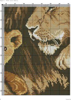 Lion Family 4