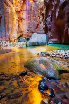 Liquid Gold ~ The Narrows, Zion National Park, Utah by Frӓncis